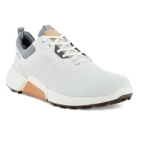 Ecco Biom Hybrid 4 GORE-TEX® (white/silver)